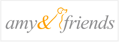 amyfriends logo